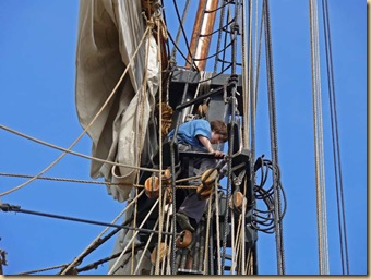 Rigging View