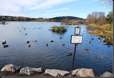 Østensjø naturreservat