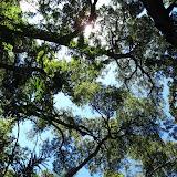 Rosalez National Park