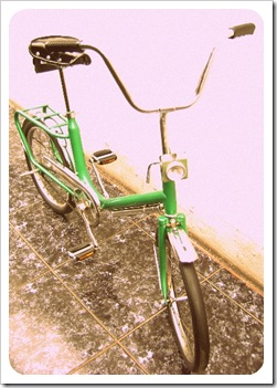 Mini Cic verde (2)