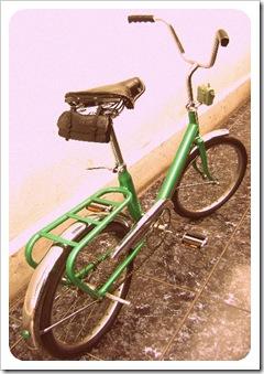 Mini Cic verde (3)