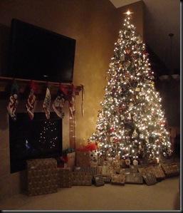 Christmas Tree 09 006