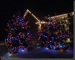 Noah Christmas Lights 042