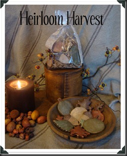 Heirloom Harvest Salt Dough