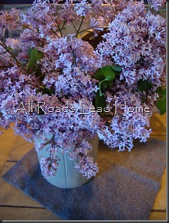Lilacs SKP FB3