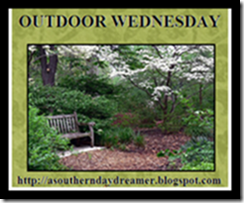 Outdoor Wednesday Button