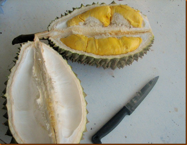 Durian 001