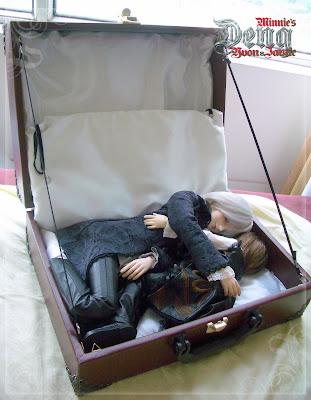 期盼已久的蔷薇箱啊,终于到了~~~~ - minniechristiedeng.vip - minniechristiedeng.vip 的博客