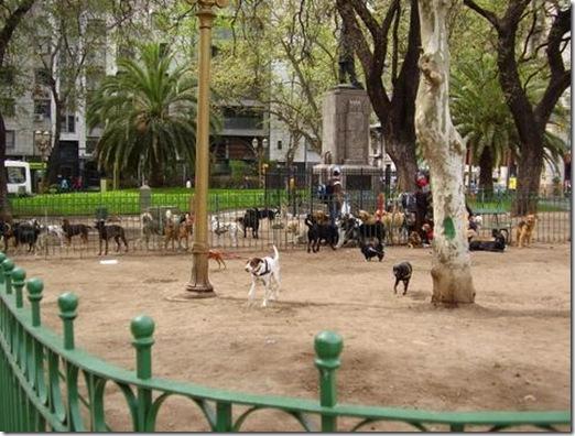 Avenida de Mayo Dog Park