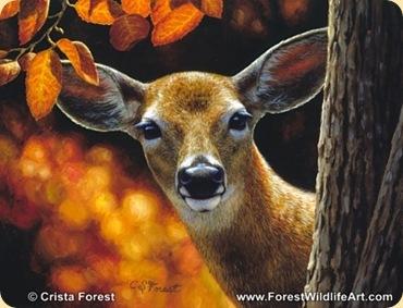 deer_surprise