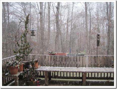 December 2010 001