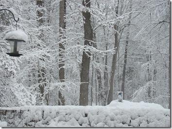 December 2010 376