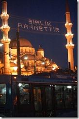 Turkia 2009 - Estambul  -Nueva Mezquita, Eminonu    557