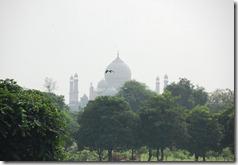 India 2010 - Agra - Fuerte Rojo , 17 de septiembre   06