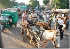 India 2010 - Agra  , 17 de septiembre   20