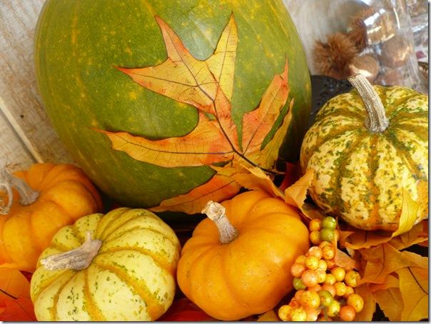 pumpkinleaf