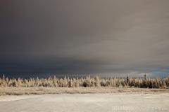 .winter