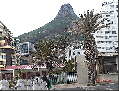 Cape Town Day 2 14
