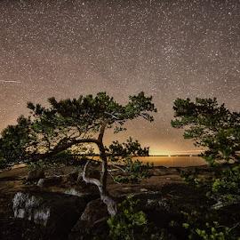 by Jari Johnsson - Landscapes Starscapes