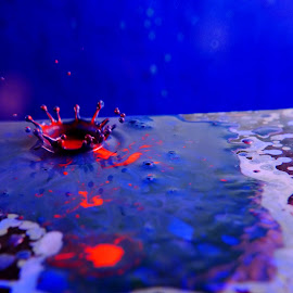Red blue crown by Anthony Doyle - Abstract Water Drops & Splashes