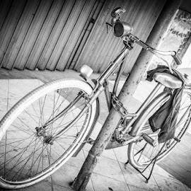 Lonely by Rino Gautama - Transportation Bicycles