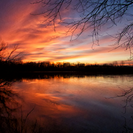 Last Sunrise of 2014 by Linda Shannon-Morgan - Landscapes Sunsets & Sunrises ( clouds, sky, winter, red, nature, outdoors, reflections, sunrise, sun )