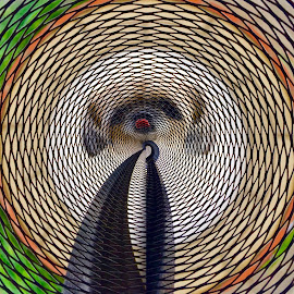 by Bong Perez - Digital Art Abstract