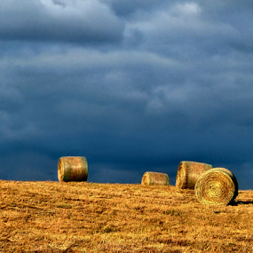 The Threatening of the Bales by Julie Dant - Landscapes Prairies, Meadows & Fields ( farm, indiana, hay field, hay bales, hay, round bales, bales, rural images, #GARYFONGDRAMATICLIGHT, #WTFBOBDAVIS )
