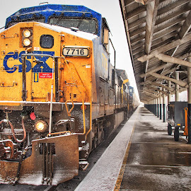 CSX by Lou Plummer - Transportation Trains