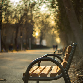 spring breath by Cornelius D - City,  Street & Park  City Parks
