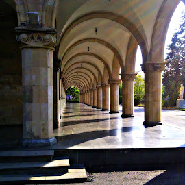 Cloister 2 by Tamsin Carlisle - Buildings & Architecture Architectural Detail ( republic, building, europe, arch, stalin, cloister, josef, georgia, stone, museum, gori, shadow, pillar )