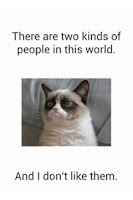 Screenshot of Grumpy Cat