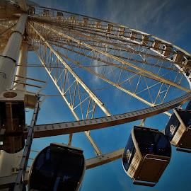 THE WHEEL by Lavonne Ripley - City,  Street & Park  Amusement Parks