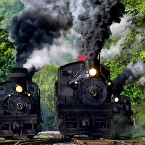 Treo by Donna Neal - Transportation Trains ( steam engins, shay, railfan, cass wv )