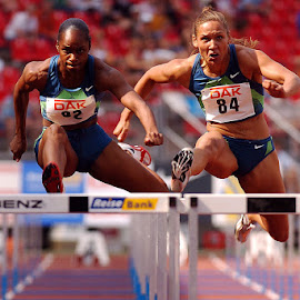 Hurdles by Peter Frank - Sports & Fitness Running ( track and field, hurdles, sports, running )