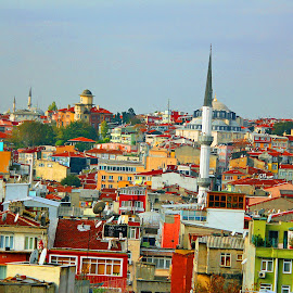 beautiful roof top view of Old Istanbul by Luci Henriques - Landscapes Weather