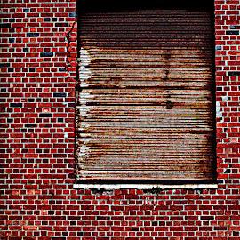a brick wall by Magdalena Wysoczanska - Abstract Patterns