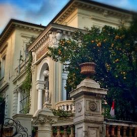 by Jose Figueiredo - Buildings & Architecture Homes ( home, monaco, architecture )
