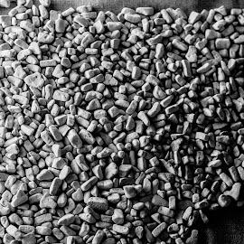 Gift Gas by Valery Sugi - Artistic Objects Still Life ( birkenau, auschwitz, wwii, oswiecim, oswiecim polska, germany, concentration camp, poland,  )