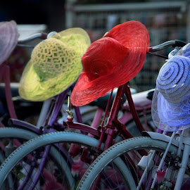 Bicycles in Jakarta by Catchlights Fotografie - Transportation Bicycles ( hats, colors, indonesia, java, jakarta, land, device, transportation )