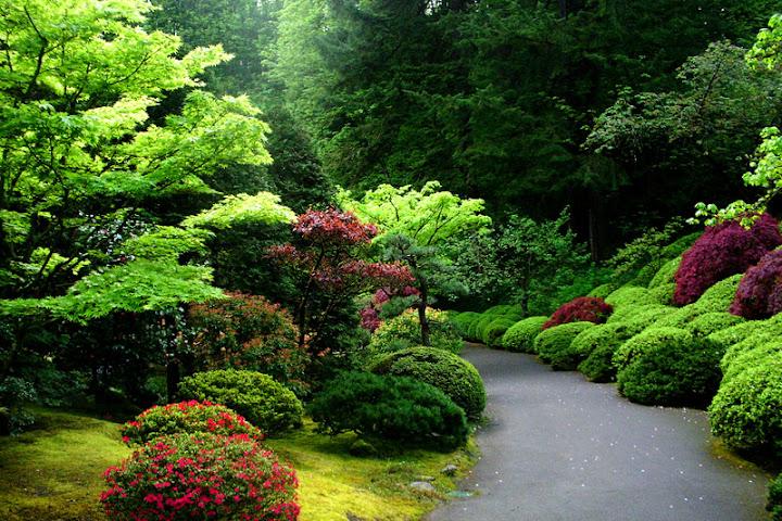 Jalan dengan pemandangan terindah di dunia mauritsalbert - Jardines japoneses zen ...