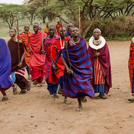 Maasai welcome by Gene Myers - People Group/Corporate ( robes, shotsbygene, colors, tribe, tanzania, women, gene myers, village, warriors, men, welcome, africa, maasai, dance,  )