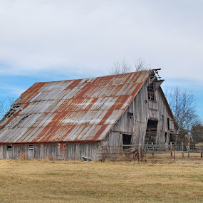 Rural Arkansas by Joel Mcafee - Buildings & Architecture Other Exteriors ( building, barn, architecture, rural, arkansas )