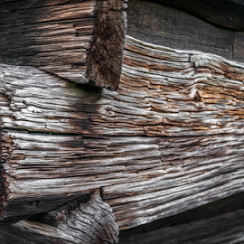 Mountain Cabin by Robert Willson - Buildings & Architecture Architectural Detail ( willson, mountains, nc, outdoor, bob willson, old wood, documentary, places, usa, robert willson, smokey mountains )