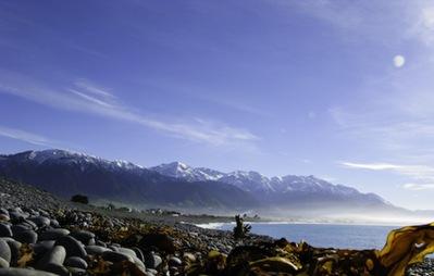 Christchurch-1169