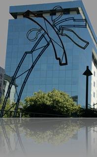 palmera_edificio_cristal_cdt