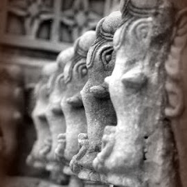Stone Elephants by Siân Oldfield - Buildings & Architecture Architectural Detail (  )