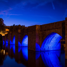Blue bridge by Sébastien Delbes - Buildings & Architecture Bridges & Suspended Structures ( blue, limoges, france, bridge, river )