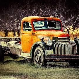 Days Gone Buy by Nikki Vig - Transportation Automobiles ( field, wisconsin, old, truck, door county, transportation, antique )