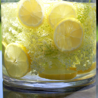 Elderflower Syrup Holdundersirup